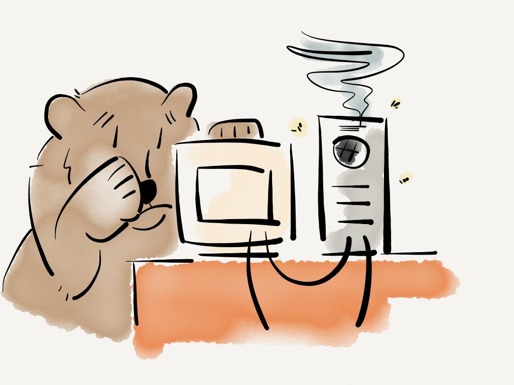 Papa Bear's computer